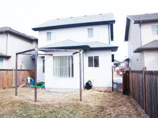 Photo 29: 4511 162A Avenue in Edmonton: Zone 03 House for sale : MLS®# E4184253