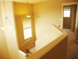 Photo 20: 4511 162A Avenue in Edmonton: Zone 03 House for sale : MLS®# E4184253