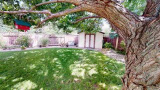 Photo 26: 122 HIGHLAND Way: Sherwood Park House for sale : MLS®# E4206475