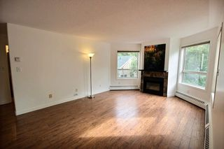 Photo 9: 202 10827 85 Avenue in Edmonton: Zone 15 Condo for sale : MLS®# E4213392