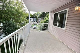 Photo 11: 202 10827 85 Avenue in Edmonton: Zone 15 Condo for sale : MLS®# E4213392
