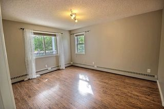 Photo 14: 202 10827 85 Avenue in Edmonton: Zone 15 Condo for sale : MLS®# E4213392