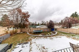 Photo 33: 46 Greenbrier Crescent: St. Albert House for sale : MLS®# E4218862