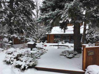 Photo 30: 14228 RAVINE Drive in Edmonton: Zone 21 House for sale : MLS®# E4188018