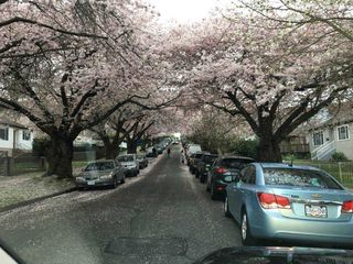 Photo 31: 3260 GRAVELEY Street in Vancouver: Renfrew VE House for sale (Vancouver East)  : MLS®# R2456621