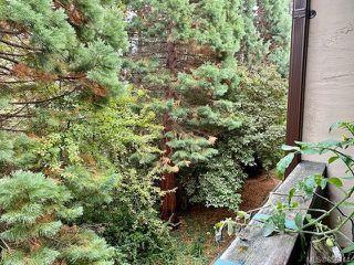 Photo 18: 308 3277 Quadra St in : SE Maplewood Condo for sale (Saanich East)  : MLS®# 856114