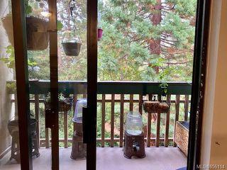 Photo 14: 308 3277 Quadra St in : SE Maplewood Condo for sale (Saanich East)  : MLS®# 856114