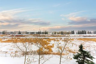 Photo 24: 6314 304 Mackenzie Way SW: Airdrie Apartment for sale : MLS®# A1039405