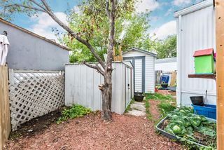Photo 33: 427 Homestead Trail SE: High River Mobile for sale : MLS®# A1018808