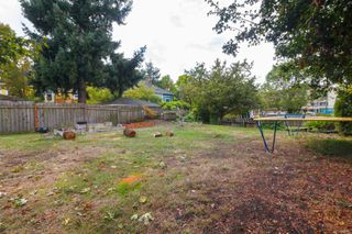 Photo 40: 2116 Cook St in : Vi Central Park House for sale (Victoria)  : MLS®# 856975