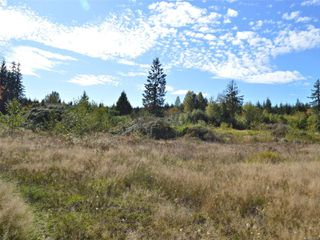 Main Photo: 276 Finch Rd in : CR Campbell River South Land for sale (Campbell River)  : MLS®# 857558