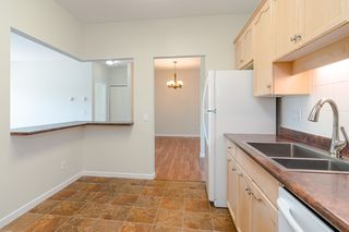 Photo 10: 209 21975 49 Avenue in Langley: Murrayville Condo for sale : MLS®# r2390189