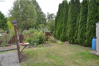 Photo 28: 3877 Grange Road in VICTORIA: SW Marigold Revenue Duplex for sale (Saanich West)  : MLS®# 414573