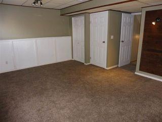 Photo 11: 15611 83A Street in Edmonton: Zone 28 House for sale : MLS®# E4169907