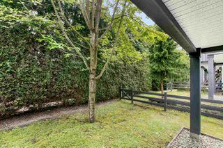 """Photo 15: 19 8767 162 Street in Surrey: Fleetwood Tynehead Townhouse for sale in """"Taylor"""" : MLS®# R2460705"""