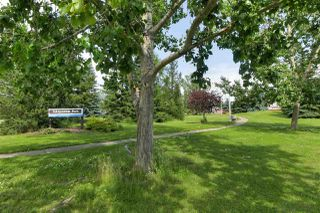 Photo 20: 4923 34A AV NW in Edmonton: Zone 29 House for sale : MLS®# E4207402