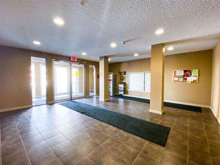 Photo 6: 401 12035 22 Avenue in Edmonton: Zone 55 Condo for sale : MLS®# E4193480