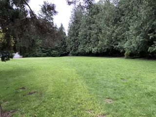 Photo 48: 2588 Birch Street in Abbotsford: Abbotsford East House for sale : MLS®# R2481340
