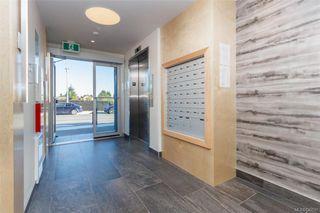 Photo 4: 206 2500 Hackett Cres in Central Saanich: CS Turgoose Condo Apartment for sale : MLS®# 830537