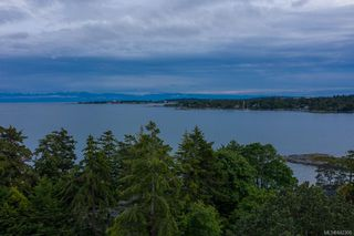 Photo 39: 2880 Sea View Rd in Saanich: SE Ten Mile Point House for sale (Saanich East)  : MLS®# 842306