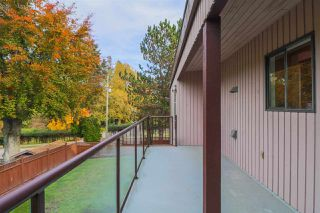 Photo 13: 1775 TRIMBLE Street in Vancouver: Point Grey House for sale (Vancouver West)  : MLS®# R2518523