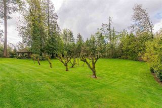 Photo 19: 28218 LAYMAN Avenue in Abbotsford: Aberdeen House for sale : MLS®# R2442105
