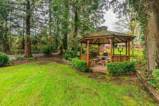 Photo 14: 28218 LAYMAN Avenue in Abbotsford: Aberdeen House for sale : MLS®# R2442105