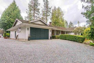 Photo 4: 28218 LAYMAN Avenue in Abbotsford: Aberdeen House for sale : MLS®# R2442105