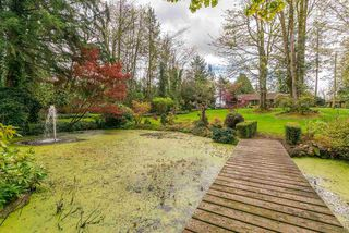 Photo 16: 28218 LAYMAN Avenue in Abbotsford: Aberdeen House for sale : MLS®# R2442105
