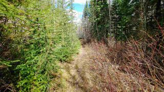 "Photo 6: LOT 2 CRANBROOK HILL Road in Prince George: Cranbrook Hill Land for sale in ""CRANBROOK HILL"" (PG City West (Zone 71))  : MLS®# R2447709"