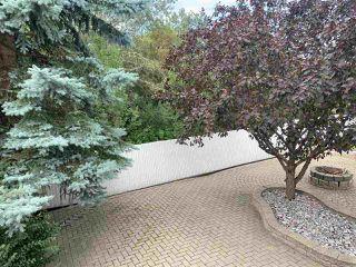 Photo 13: 14348 123 Street NW in Edmonton: Zone 27 House for sale : MLS®# E4214390