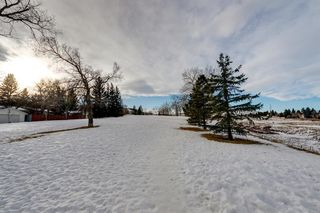 Photo 2: 220 Hunterbrook Place NW in Calgary: Huntington Hills Detached for sale : MLS®# A1059526