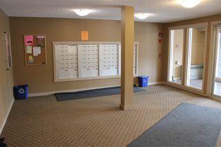 Photo 26: 404 18126 77 Street in Edmonton: Zone 28 Condo for sale : MLS®# E4168619