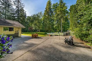 Photo 33: 17095 23 AVENUE in Surrey: Pacific Douglas House for sale (South Surrey White Rock)  : MLS®# R2460068