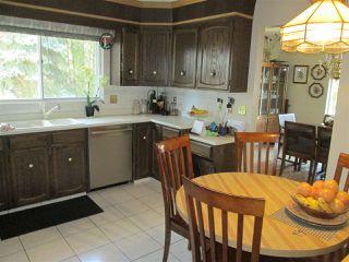 Photo 16: 3412 83 Street in Edmonton: Zone 29 House for sale : MLS®# E4172802