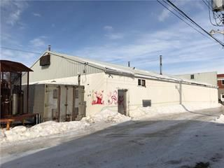 Photo 11: 111 2nd Street in Oakville: Industrial / Commercial / Investment for sale (R38 - RM of Portage la Prairie)  : MLS®# 202004326