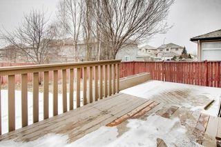 Photo 34: 80 EDGERIDGE View NW in Calgary: Edgemont Detached for sale : MLS®# C4293479