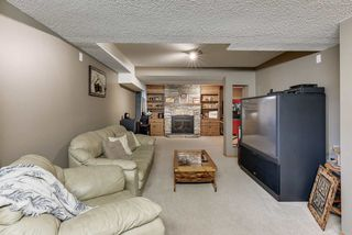 Photo 37: 51 PARKWOOD Drive: St. Albert House for sale : MLS®# E4198289