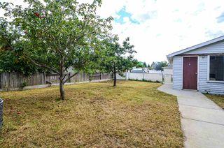 Photo 9: 7319 149 Avenue in Edmonton: Zone 02 House for sale : MLS®# E4217678