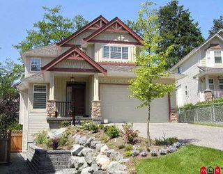 Main Photo: 6863 199A ST in Langley: Willoughby Heights House for sale : MLS®# F2611058