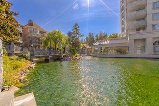 Photo 19: 410 3075 PRIMROSE Lane in Coquitlam: North Coquitlam Condo for sale : MLS®# R2393225