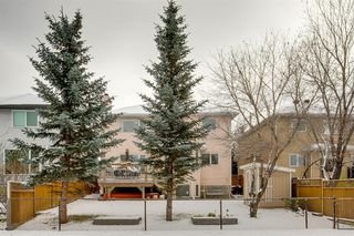 Photo 37: 260 Douglasbank Place SE in Calgary: Douglasdale/Glen Detached for sale : MLS®# A1042919