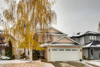 Photo 31: 260 Douglasbank Place SE in Calgary: Douglasdale/Glen Detached for sale : MLS®# A1042919