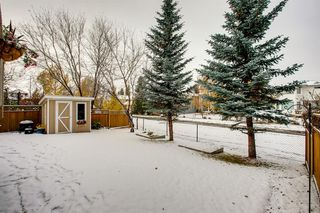 Photo 35: 260 Douglasbank Place SE in Calgary: Douglasdale/Glen Detached for sale : MLS®# A1042919