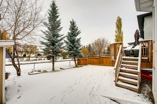 Photo 34: 260 Douglasbank Place SE in Calgary: Douglasdale/Glen Detached for sale : MLS®# A1042919