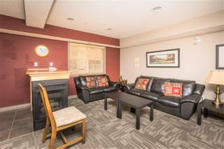 Photo 40: 431 279 SUDER GREENS Drive in Edmonton: Zone 58 Condo for sale : MLS®# E4220241