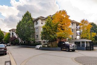 """Photo 1: C210 8929 202 Street in Langley: Walnut Grove Condo for sale in """"THE GROVE"""" : MLS®# R2517699"""