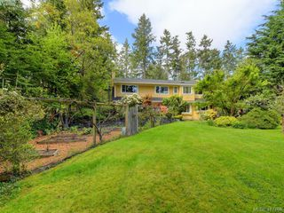 Photo 31: 595 Downey Rd in NORTH SAANICH: NS Deep Cove House for sale (North Saanich)  : MLS®# 828060