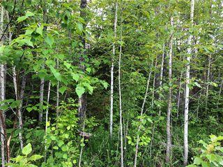 Photo 1: 29 Fairway Drive in Lac Du Bonnet RM: Granite Hills Residential for sale (R28)  : MLS®# 202004374