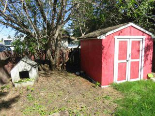 Photo 29: 13335 119 Street in Edmonton: Zone 01 House Half Duplex for sale : MLS®# E4189363